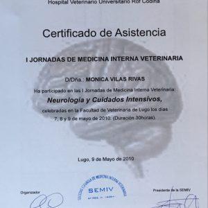 Neurología y Cuidados Intensivos